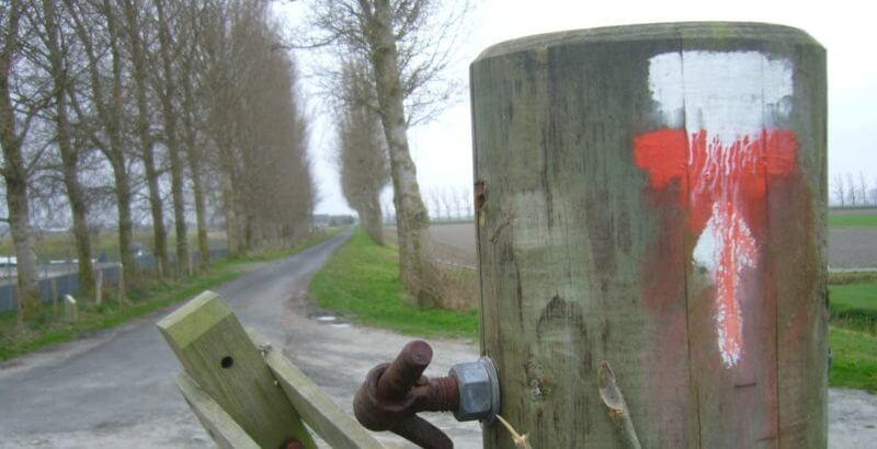 Chemin GR dans la Baie - Crédit : Aurore Maignan