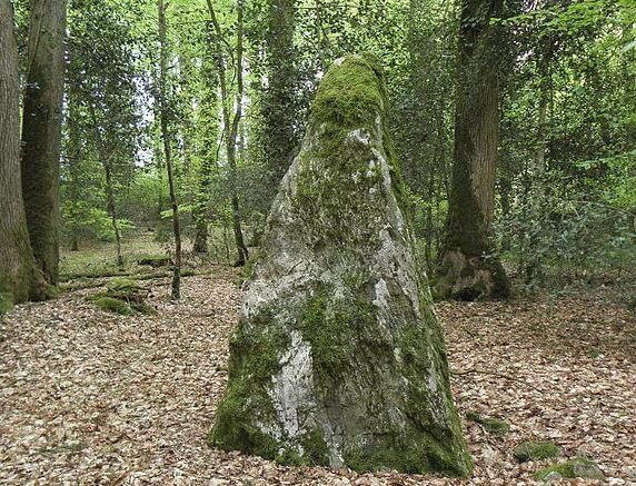 Menhir de la forêt de Haute-Sève à Saint-Aubin-du-Cormier