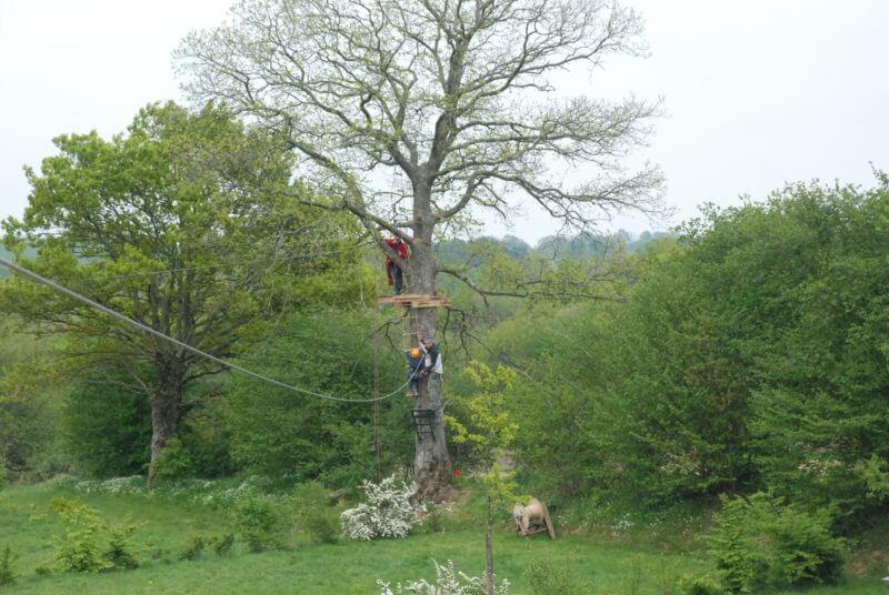 Parcours acrobatique dans les arbres
